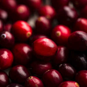 cranberry seed oil for dry skin