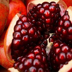 best natural skin moisturizers, pomegranate seed oil