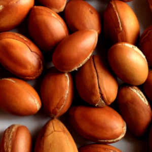 argan oil for dry skin